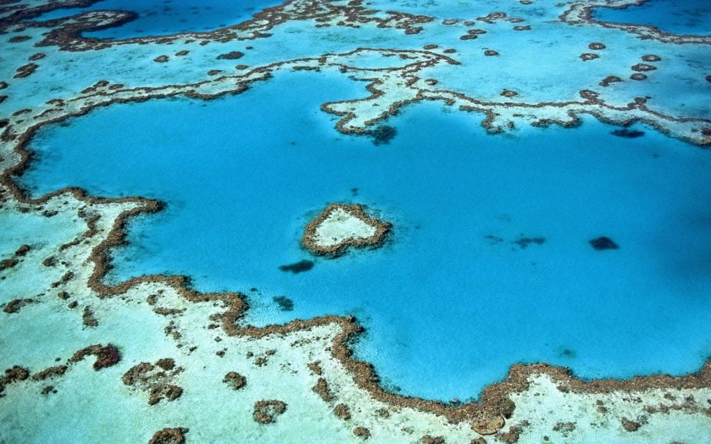 Heart Reef - Great Barrier Reef