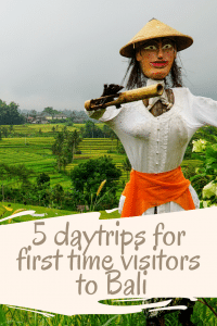 5 perfect Itineraries for first time visitors to Bali