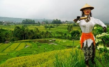 Scarecrow over Rice Terraces