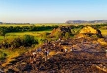 Ubirr Rock in Kakadu National Park