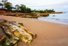 Do the Top End - Darwin to Kakadu