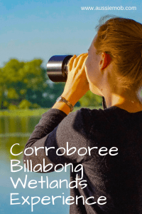 Corroboree Billabong